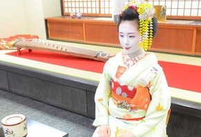 TEA CEREMONY and MEET MAIKO